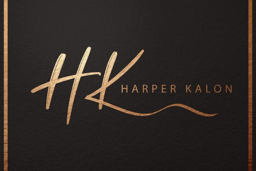 <span>Graphic Design, Illustration, Logo</span>Logo Design